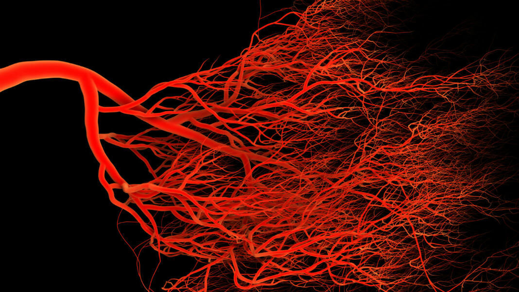 3D-bioprinting-vascularized-tissue-blood-vessels (1)